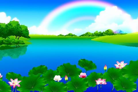 手机壁纸 风景壁纸 彩虹下的荷塘