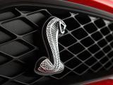福特眼镜蛇GT500标志